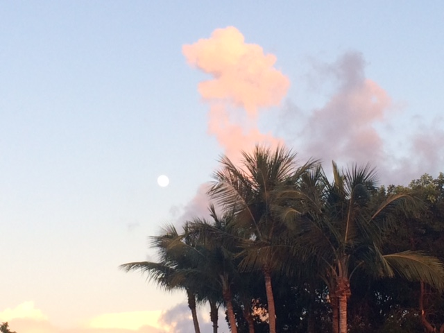 August moon in Islamorada